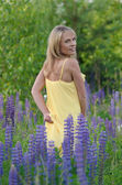 Young beautiful woman in the lupine field — Foto de Stock