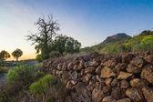 Lansdcape of Tenerife — Stock Photo