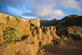 Landscape of Tenerife — Foto de Stock