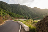 Mountain road in Tenerife — Foto Stock