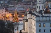 Christmas tree in f Vilnius, Lithuania — Stok fotoğraf