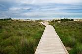 White sand beach of Chia, Sardinia — Stock Photo