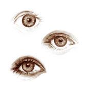 Eye set — Stock Photo