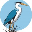 Heron — Stock Vector