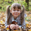 Cute little girl is playing with leaves in autumn park — Stock Photo #30271529