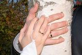 Mains de la mariée et le marié — Photo