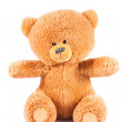 Teddy-bear isolated on a white background — Stock Photo