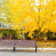 Autumn in Helsinki Public Garden — Foto Stock