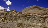 Diskit Monastery Ladakh, India — Stock Photo