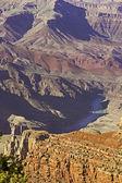 在大峡谷国家公园中的科罗拉多河 — 图库照片
