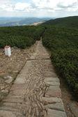 Trail in Karkonosze mountains — Stock Photo