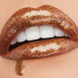 Glittering Chocolate Lips with Gold Brocade — Stok fotoğraf