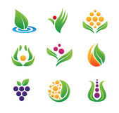 Healthy green nature food product logo template and icon set — 图库矢量图片
