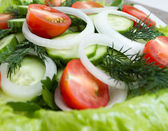 Dietary salad. Close-up — Stock Photo