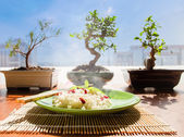 Rice and bonsai — Stock Photo