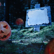 Stock Photo: Pumpkins at night in forest