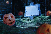Pumpkins at night in forest — Stock Photo
