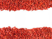 Frame is made of Tibetan goji berries — Stock Photo