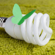 Energy saving bulb on a green background — Stock Photo