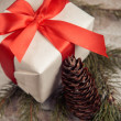 Present and pinecone — Stock Photo