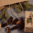 Fir-tree branches and cones — Stockfoto