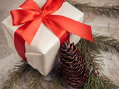 Present and pinecone — 图库照片