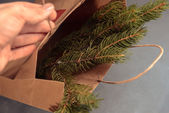 Package with fir-tree branches — Stock Photo