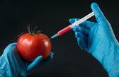 Injektion in tomaten — Stockfoto