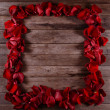 Frame of roses — Stock Photo #41554657