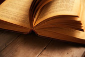 Macro image of open book — Stockfoto