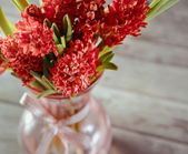 Hyacinths in a vase — Stock Photo