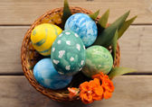 Colored eggs and flower in a basket — Foto Stock