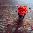 Red flowers geraniums and red petals — Stock Photo #44739581