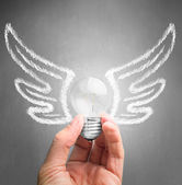 Hand holds a light bulb with drawing wings — Stock Photo