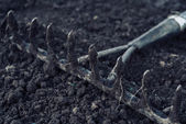 Gardening rake — Stock Photo
