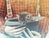 Woman holds hat with kitten — Stock Photo