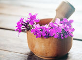 Willow-herb flowers in mortar — Stock Photo