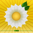 Big daisy on background sun — Stock Vector