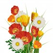 Bouquet of poppies and daisies — Stock Vector