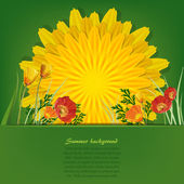 Summer bright background with dandelion and poppies — Stock Vector