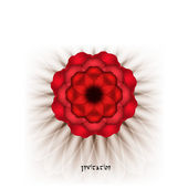Spectacular red flower on a white background. — Stock Vector