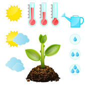 Condiciones de cultivo de plantas y — Vector de stock