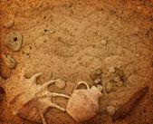 Jug with coins on the seabed. sunken treasure — ストック写真