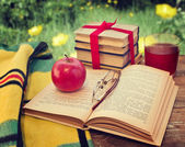 Open book on a table in the garden — Stock Photo