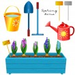Box with blooming hyacinths and a set of garden tools — Stock Vector