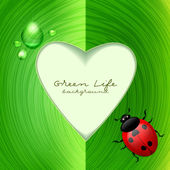 Green frame with ladybug. Ecological background — Stock Vector