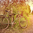 Old bike at the fence. village Street — Stock Photo #45804059