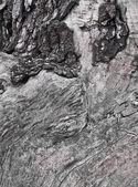 Textuur van oud hout. plaats voor tekst — Stockfoto