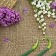 Lilac and lily of the valley on a canvas background. Floral fram — Stock Photo #46266175