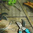 Set of garden tools. Pruning in the garden.  — Stock Photo #46266241